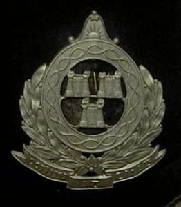 Poilini Ath Cliath Helmet Plate